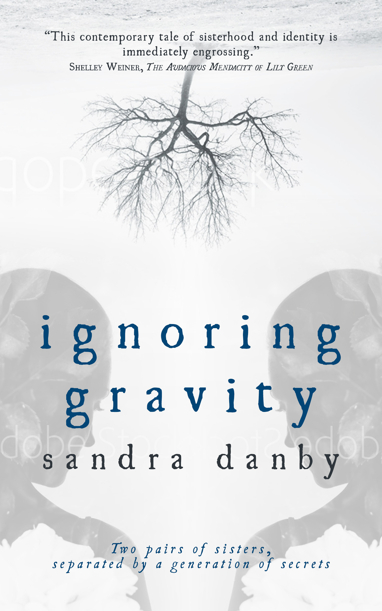 cover design a new look for ignoring gravity by sandra danby